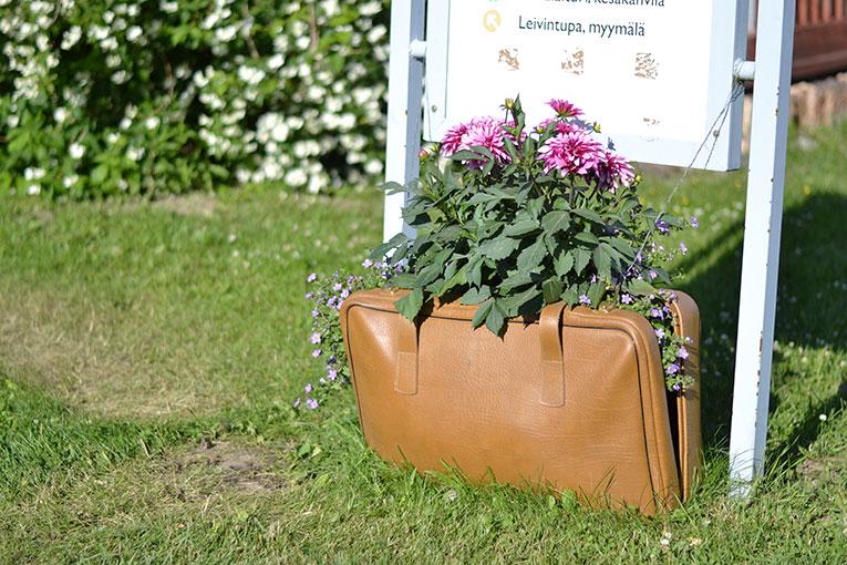 Finland, Mikkeli, travel, Kenkavero, flowers, garden