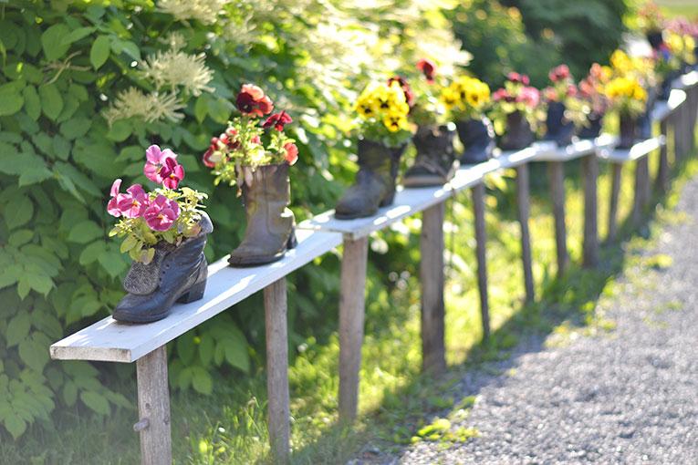 Finland, Mikkeli, travel, Kenkavero, flowers, garden, Saimaa lake