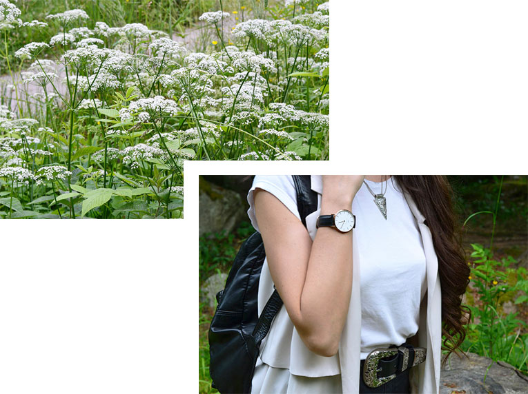 details, fashion, watch, daniel welington, flowers