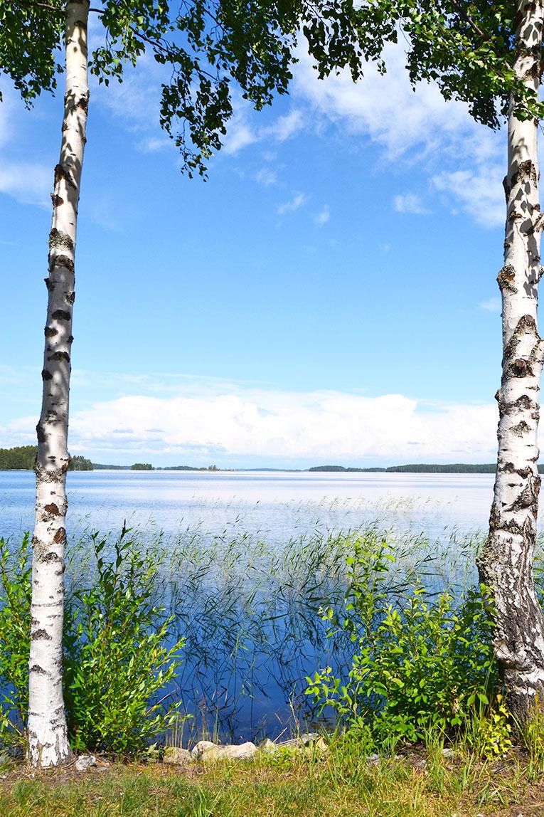 finland, travel, punkaharju, Sanvolina, Imatra , Lappeenranta, forest, nature, lake